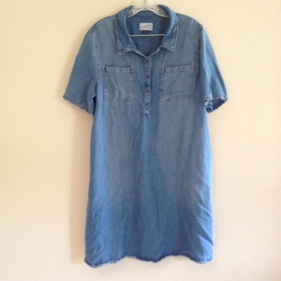 Plus Size Universal Thread Chambray Shirt Dress